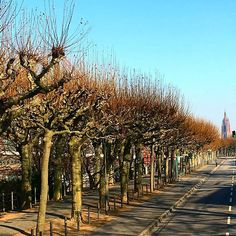 Frankfurt ❤❤❤ #frankfurt #germany #alemanha #lovetotravel #ambiente17 #decor #design #architecture #interiordesign #gratidão #gratiful #godbless