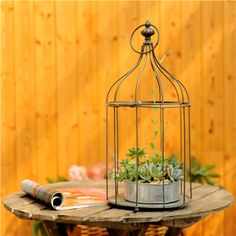 Creative Pastoral Style Bird Cage Flower Pots And More Meat Hanging Spider Plants Decorative Wrought Iron Garden Decoration | Cheap Product is Available. This Online shop provide the best deals of finest and low cost which integrated super save shipping for Creative pastoral style bird cage flower pots and more meat hanging spider plants decorative wrought iron garden decoration or any product promotions. I think you are very happy To be Get Creative pastoral style bird cage flower pots and…
