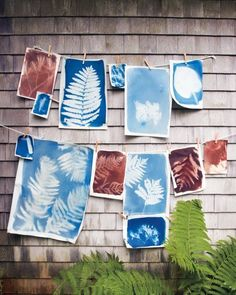 to Make Sunprints Make gorgeous sun-prints with this easy tutorial.Make gorgeous sun-prints with this easy tutorial. Crafts To Do, Crafts For Kids, Arts And Crafts, Diy Crafts, Decor Crafts, Paper Crafts, Art Journaling, Silkscreen, Sun Prints