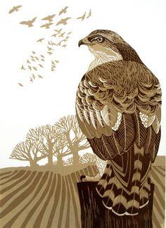 Linocut Edition by Liz Myhill Illustrations, Illustration Art, Botanical Illustration, Linocut Prints, Art Prints, Block Prints, Wood Engraving, Wildlife Art, Woodblock Print