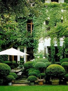 Beautiful boxwood garden design