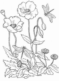 Trendy flower art pattern coloring pages ideas Pattern Coloring Pages, Colouring Pages, Coloring Books, Flower Line Drawings, Art Drawings, Fabric Painting, Painting & Drawing, Paint Designs, Pattern Art