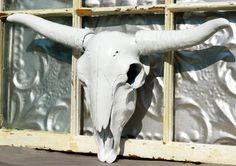 Faux Taxidermy / Steer Skulls/ Cow Horns/ by MichelleLisaTreasure, $75.00