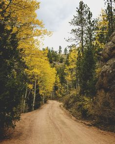 Phantom Canyon Road - Victor CO [1600x2000] [OC] via Classy Bro