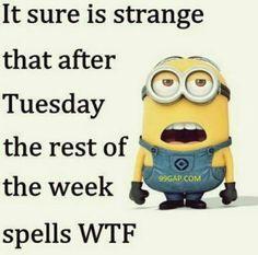 #LOL: Funny Minion Meme