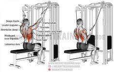 Double cable neutral-grip lat pull-down exercise