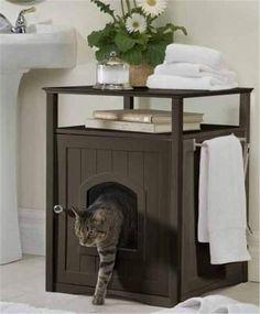 Pet-Friendly Decorating -- Bathroom Litter Box