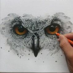 Real version on paper of Owl Eyes! It's not as perfect as the digital version but i hope you like it!  Avaliable to print!  #ronaldrestituyo #drawing #art (pencil colorful flowers) Drawings Of Owls, Paintings Of Owls, Animal Drawings, Owl Eye Tattoo, Hedwig Tattoo, Owl Sketch, Owl Animal, Owl Art, Bird Art
