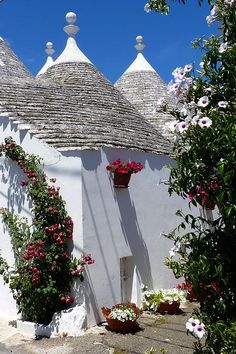 Alberobello, Italy is famous for its traditionally built ancient stone houses called trulli.