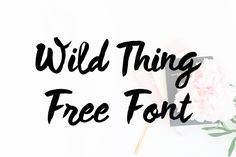 DLOLLEYS HELP: Wild Thing Free Font