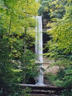 Yahoo Falls. Some sources claim this is the highest waterfall in Kentucky, so that makes it significant. If you are in the Big South Fork Area in spring, definitely check this waterfall out, and go visit some of the nearby arches.  Kentucky, Whitley City.