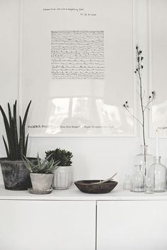 Plant Home Decor Inspiration