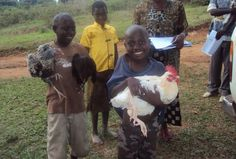 $10 will pay half the price of a hen or cock. - Chickens for 100 Orphans in Rural Buwunga