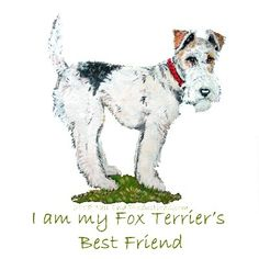 Fox Terrier Dog Friend