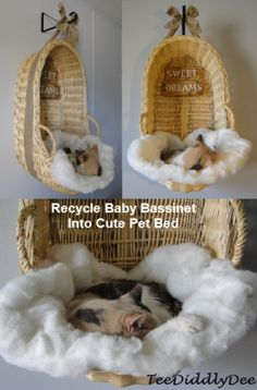"Recycle Baby Bassinet Into Cute Pet Bed! ""Looks like she is sleeping on a cloud…:) """