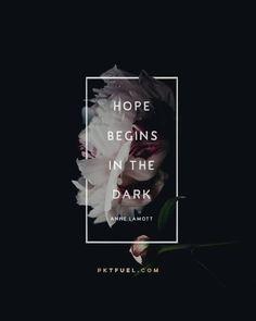 Hope Begins in The Dark - Anne Lamott Laptop & iPad Skin by pocketfuel Light And Dark Quotes, Light In The Dark, Iphone Wallpaper With Quotes, Iphone Wallpapers, Hd Desktop, Make Everything Ok, Whispers In The Dark, Anne Lamott, Motivational Quotes