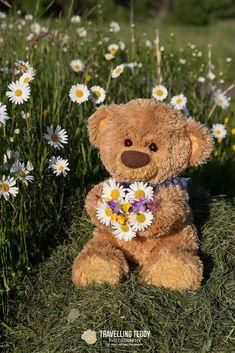 Love you – Cute Love Wallpaper Teddy Bear Images, Teddy Bear Pictures, My Teddy Bear, Cute Teddy Bears, Tatty Teddy, Bear Wallpaper, Iphone Wallpaper, Love Bear, Cute Love