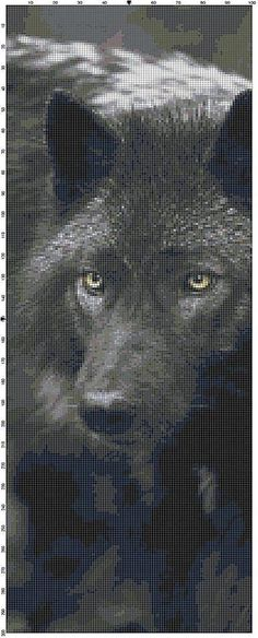 Take yourself into the wilderness as you stitch up this amazing close up of a black wolf. Stitched in shades of black and light and dark