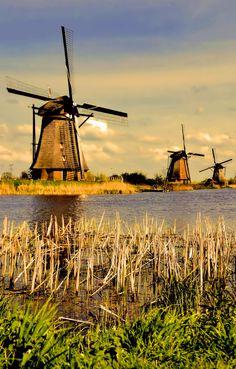 kinderdijk, holland windmills  photography