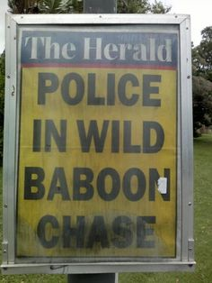 South Africa for you ....hahaha