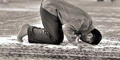 Şükür Secdesi      397- Şükür secdesi, bir nimetin kazanılmasından veya bir felâket ve musibetin kalkmasından ve bunların benzeri işlerden dolayı kıbleye yönelerek tekbir alıp secdeye varmak, hamd ile tesbihde bulunup şükrettikten sonra, yine tekbir ile secdeden kalkmaktır. Bu da tilâvet secdesi gibidir.