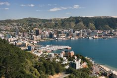 From the new to the old, Wellington offers a bit of everything. A great way to explore the city is on the restored cable cars, which traverse the shopping district. And if you want to experience it all from above, take in the panoramic views from Mount Victoria. #Wellington #NewZealand #CelebrityCruises