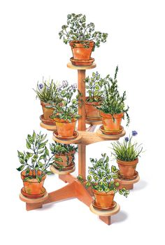 Nine-Pot Plant Stand Thrill the garden lover in your family with this easy-to-make project. By Tim Johnson This sturdy little stand is perfect for your deck or patio. It's got room for your favorite plants and it doesn't take up a lot of space.When the weather gets cold, you can easily bring it, and a bit of summertime, indoors. There's no complicated joinery, just glue and screws.The legs simply chase …