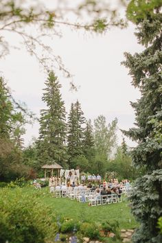 Lovely forest weddings!!  View the full wedding here: http://thedailywedding.com/2015/11/22/dreamy-forest-wedding-emily-michael/