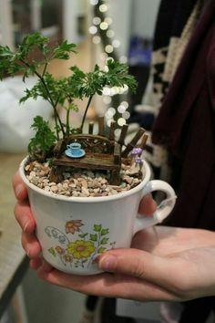 31 Gorgeous Teacup Mini Garden Ideas To Add Happiness To Your Home # . 31 Gorgeous Teacup Mini Garden Ideas To Add Happiness To Your Home Mini Fairy Garden, Fairy Garden Houses, Fairy Pots, Fairy Gardening, Flower Gardening, Garden Boxes, Teacup Crafts, Dish Garden, Garden Kids