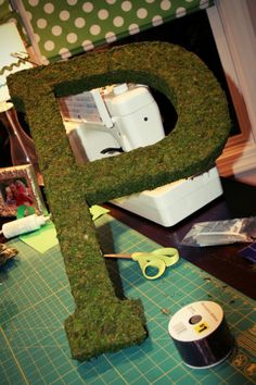 moss letter tutorial- Do this with the letter Z for Zoey