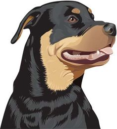 cartoon rottweiler pictures | description rottweiler 2 rottweiler 2 vector graphic can be downloaded ...