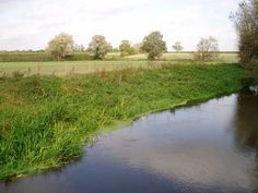 River Cam or Rhee, Haslingfield