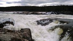 Muskrat Falls, Labrador. On this same page is an audio interview with none other than me mudder, Roberta Benefiel!