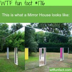 Picture of mirror house -WTF fun facts