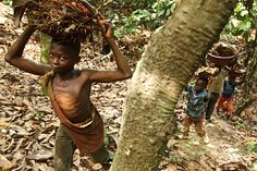 Firimin Kouassi (age 13) carries palm nuts on his uncle's cacao plantation in Bas-Sassandra Region of Côte d'Ivoire. Like half of eligible children in the region, he does not attend school. Most of the children help their parents work, and those who do go to school usually work on days when they are not in the classroom.  UNICEF supports initiatives to improve access to basic education and strengthen child protection networks.  © UNICEF/Olivier Asselin  http://www.unicef.org