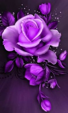628 best purple flowers images on pinterest in 2018 beautiful rose pink purple purple flowers shades of purple purple art bright purple mightylinksfo