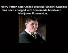 harry potter facts - Google Search