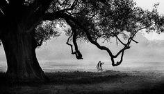 fotografia preto e branco artistica - Pesquisa Google