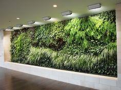 Tendência mundial # Verde em destaque subindo pelas paredes • Jardim de Siguta •