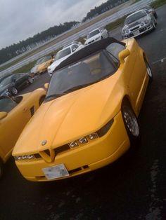 Alfa Romeo RZ - LGMSports.com