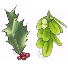 Tutorial: Coloring holly and mistletoe with Copic markers