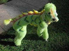 dragon costume for dog