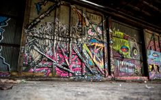 Zoom In: Warehouse Graffiti In Red Hook - ANIMAL