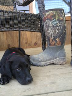 Lazy Sunday in MuckBoots | Life in Your Muck Boots | Pinterest