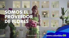 Colombia: Un lugar lleno de Respuestas