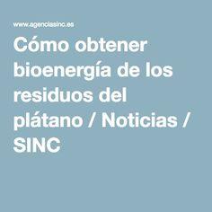 Cómo obtener bioenergía de los residuos del plátano / Noticias / SINC
