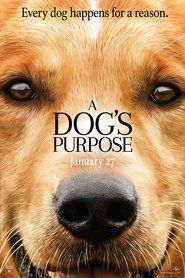 A Dog's Purpose (2017) movie