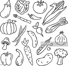 View top-quality illustrations of Vegetable Doodles. Find premium, high-resolution illustrative art at Getty Images. Doodle Art, Doodle Drawings, Easy Drawings, Vegetable Drawing, Vegetable Cartoon, Cartoon Vegetables, Planner Doodles, Food Doodles, Bullet Journal Art