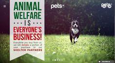 Pets.id - http://j.mp/2hWcFEA