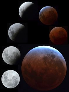 December 11, 2011  Matthew Wastell  eclipse December 11, Celestial